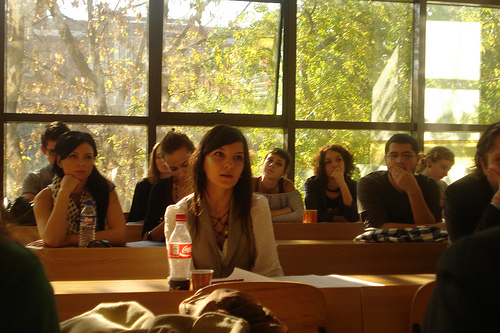 "Bucharest Conference in Applied Ethics '08: ""Ethics Management, Corporate Strategy, and Sustainable Development"""